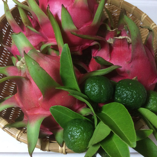 沖縄県産ドラゴンフルーツ(赤)2kg(フルーツ)