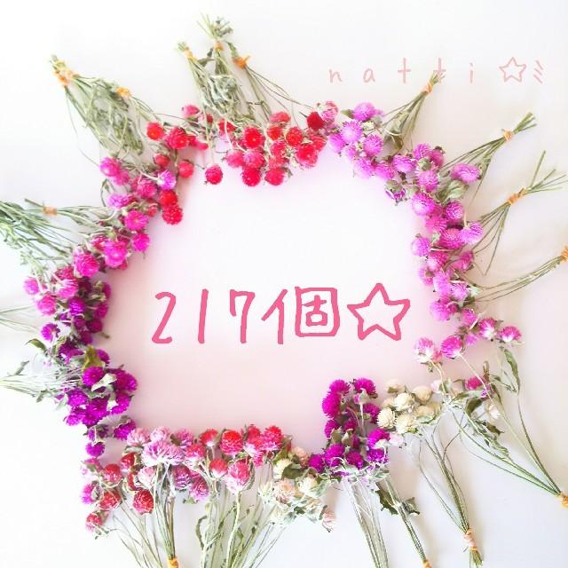 217個☆千日紅アソート*°てんこ盛りセット(*^^*)*° ハンドメイドのフラワー/ガーデン(ドライフラワー)の商品写真