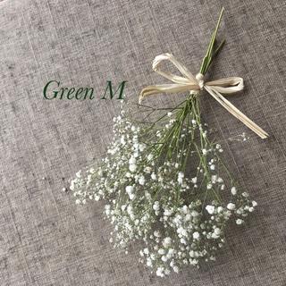34番◉かすみ草スワッグ&丸葉が可愛いポポラスの葉セット☆送料無料(ドライフラワー)