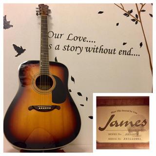 ジェームス(James)のあづき様専用 430.James JD350TS❗️トップ単板‼️(アコースティックギター)