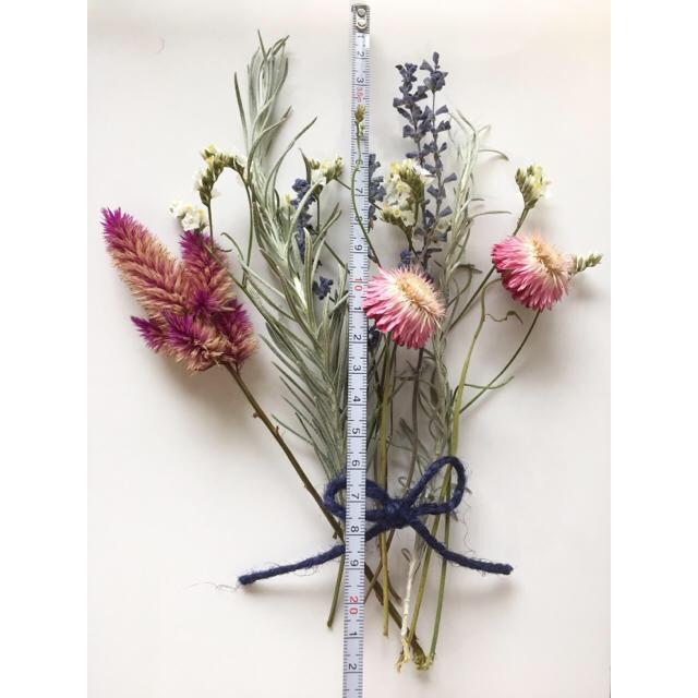 ☆ドライフラワー花材☆ ハンドメイドのフラワー/ガーデン(ドライフラワー)の商品写真