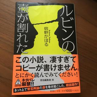 ★専用★ルビンの壺が割れた(文学/小説)