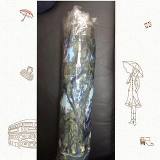 グレースコンチネンタル(GRACE CONTINENTAL)のグレースコンチネンタル☆傘(傘)