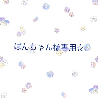 ぽんちゃん様専用☆スターチス 千日紅 花びら+貝細工58個 訳あり(ドライフラワー)