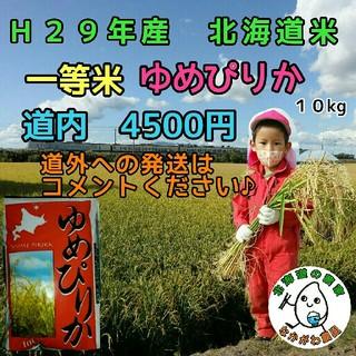 農家直売 北海道米 ゆめぴりか 10kg 29年産(米/穀物)