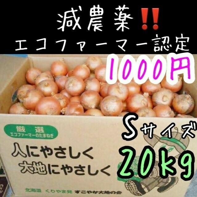 北海道産 減農薬 玉ねぎ Sサイズ 食品/飲料/酒の食品(野菜)の商品写真
