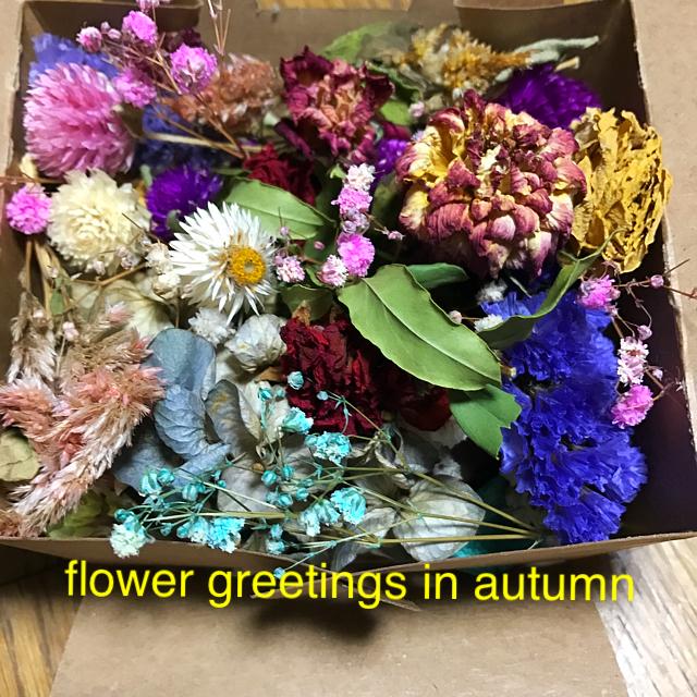 ドライフラワー 花材 枝つき ヘッド混入 ポプリ入り mix ハンドメイドのフラワー/ガーデン(ドライフラワー)の商品写真