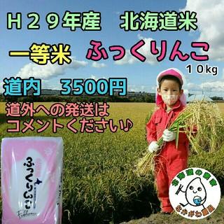 専用!29年産 新米 農家直売 北海道米 ふっくりんこ  10kg(米/穀物)