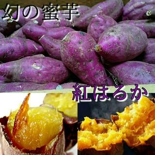 《最安値!》幻の蜜芋紅はるか約10kg 送料無料2(野菜)