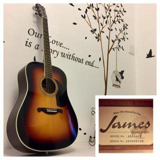 ジェームス(James)のまや様専用 454.James JD350TS❗️トップ単板‼️(アコースティックギター)