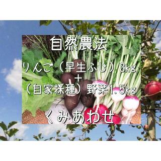 自然農法りんご3kgと自家採種完全自然栽培野菜1.5kgのくみあわせ(野菜)