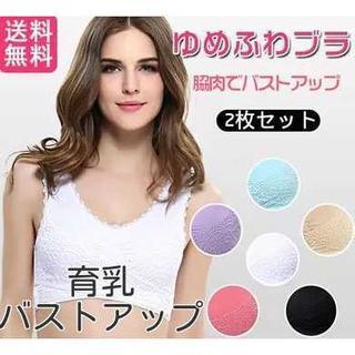 ナイトブラ新品 ナイトブラ育乳 2枚セット ブラジャー新品 ローズ(ブラ)