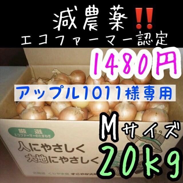 アップル1011様専用 食品/飲料/酒の食品(野菜)の商品写真