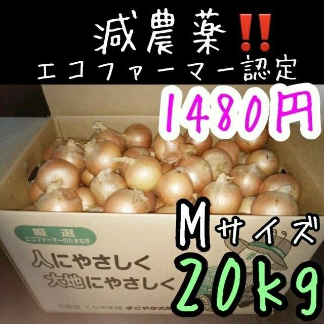 北海道産 減農薬 玉ねぎ Mサイズ 食品/飲料/酒の食品(野菜)の商品写真
