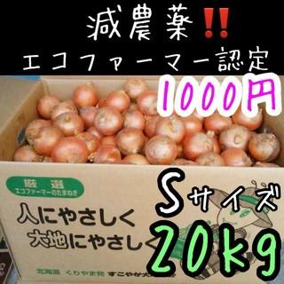 北海道産 小さい玉ねぎ コメント専用(野菜)