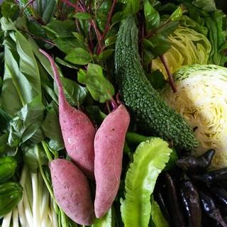 常温便 色々お野菜➰! 野菜詰め合わせ(野菜)