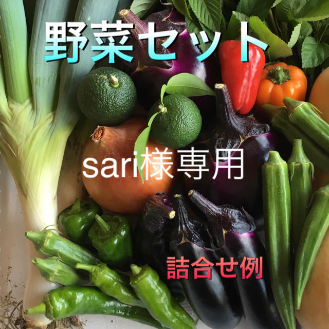 野菜セット  60  sari様専用 食品/飲料/酒の食品(野菜)の商品写真