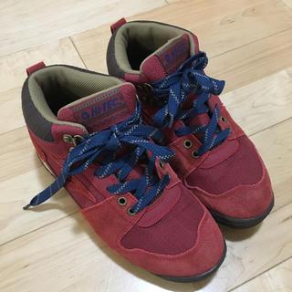 ハイテック(HI-TEC)の【試着のみ】トレッキング ハイキング シューズ 靴(スニーカー)