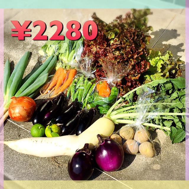 野菜セット  12品 食品/飲料/酒の食品(野菜)の商品写真