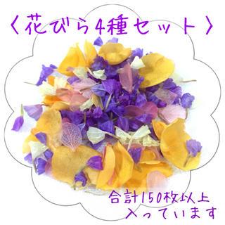 〈花びら4種②〉スターチス・薔薇・紫陽花*ドライフラワー プリザーブドフラワー(ドライフラワー)