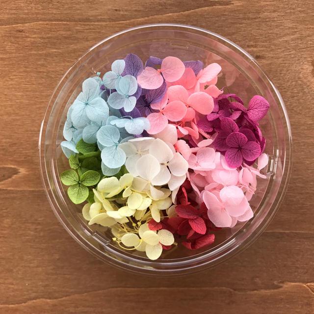 アジサイ♡花材 ハンドメイドのフラワー/ガーデン(プリザーブドフラワー)の商品写真
