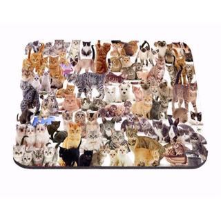 猫 猫マウスパッド ねこマウスパッド 新品未使用品 送料無料(猫)