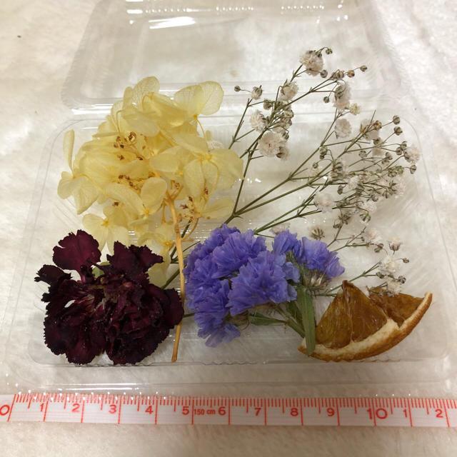 【1】花材セット ハンドメイドのフラワー/ガーデン(ドライフラワー)の商品写真