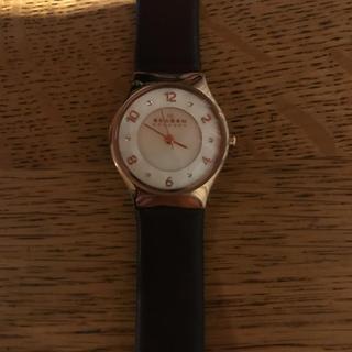 スカーゲン(SKAGEN)のスカーゲン skw2210(腕時計)