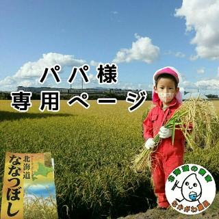 パパ様専用 ななつぼし(米/穀物)