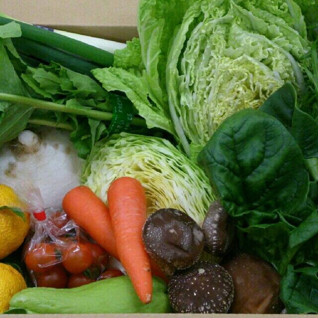 こじ*@様専用ページ お味噌500㌘込 食品/飲料/酒の食品(野菜)の商品写真