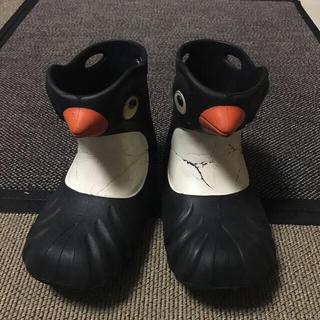 🐧ペンギン長靴🐧ポリウォークス17.8cm(長靴/レインシューズ)