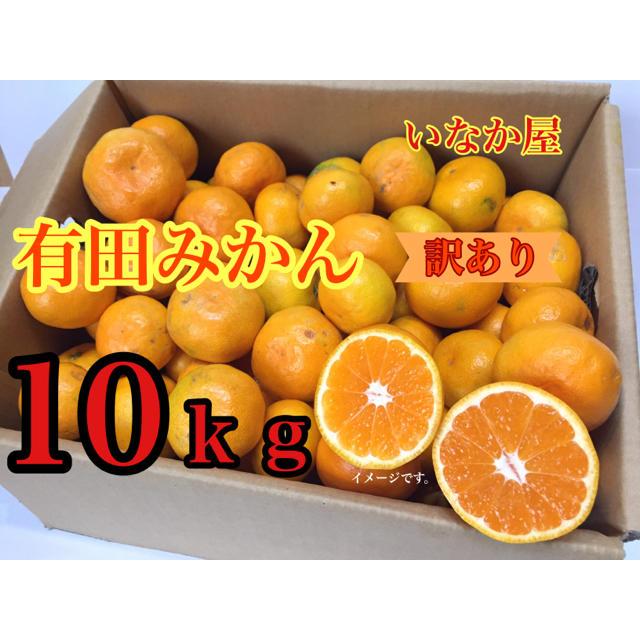 有田みかん10kg 訳あり 食品/飲料/酒の食品(フルーツ)の商品写真