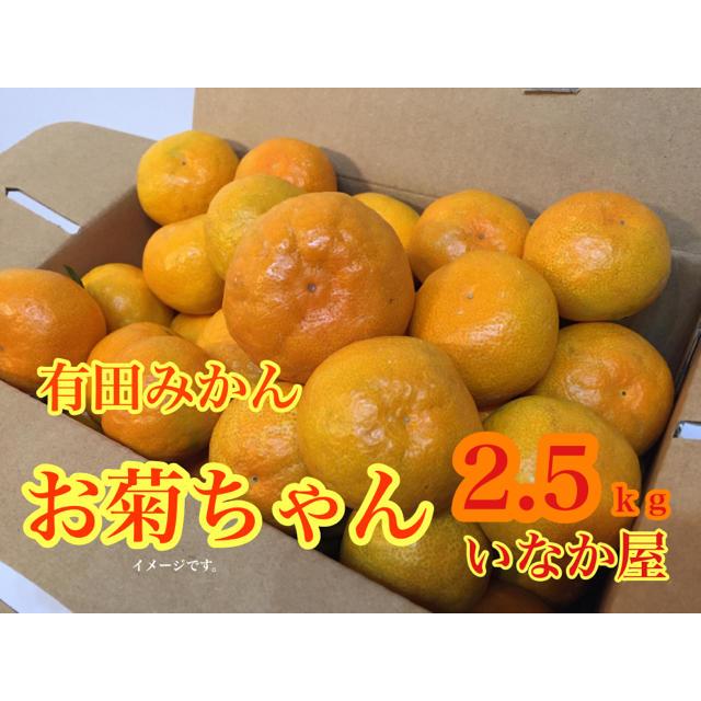 有田みかん 極早生 お試し価格 食品/飲料/酒の食品(フルーツ)の商品写真