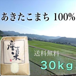 【アップル1011様専用】愛媛県産あきたこまち100%  30kg  農家直送(米/穀物)
