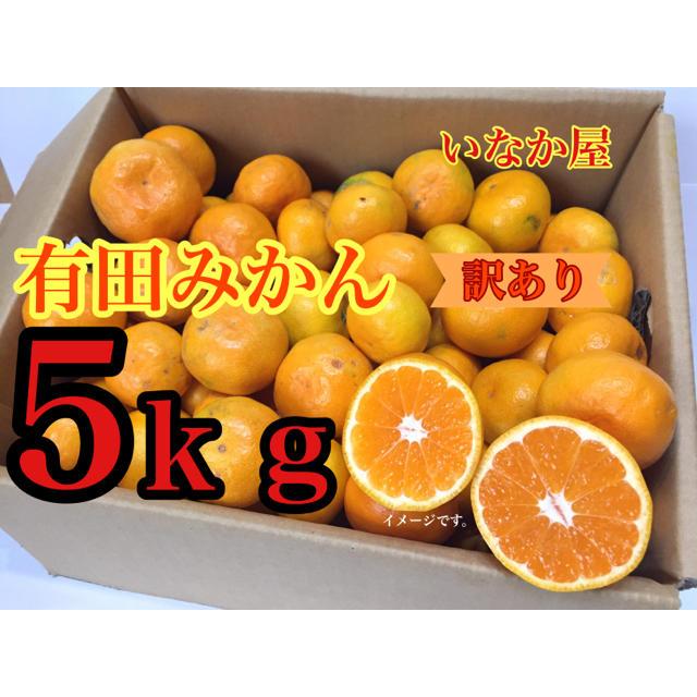 有田みかん訳あり 食品/飲料/酒の食品(フルーツ)の商品写真