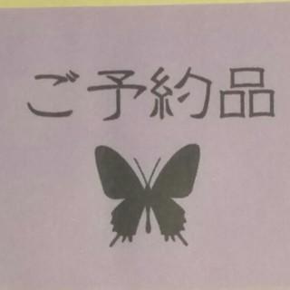 minto様♡ご予約品(プリザーブドフラワー)