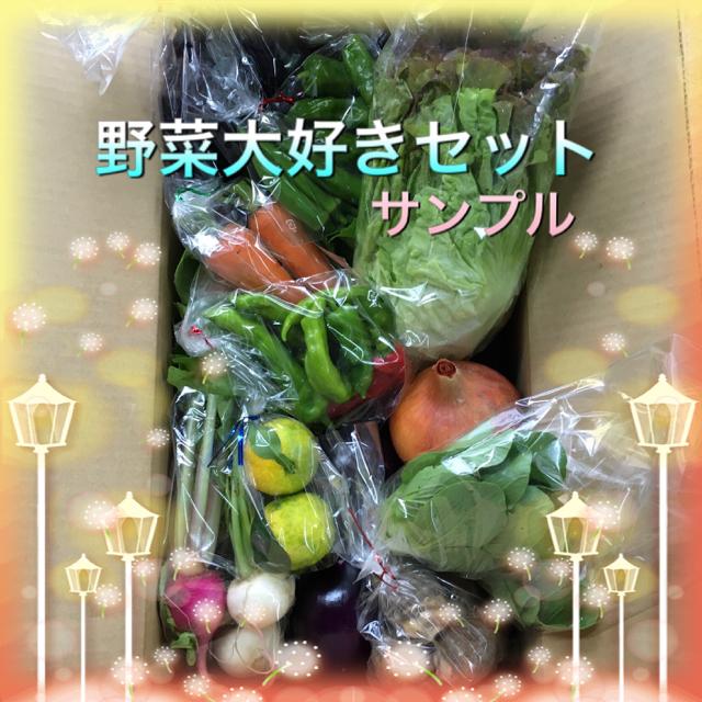 野菜セット 食品/飲料/酒の食品(野菜)の商品写真