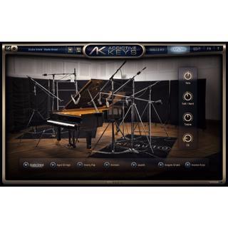 ピアノ Addictive Keys Duo エレピ 音源 vst(ソフトウェア音源)