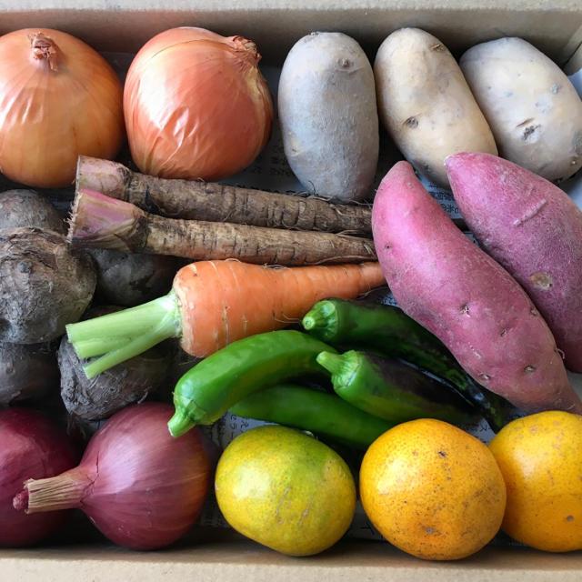 淡路島♡9種のミニ野菜set 食品/飲料/酒の食品(野菜)の商品写真