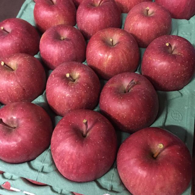 専用 りんご 贈答用 食品/飲料/酒の食品(フルーツ)の商品写真