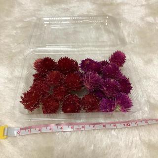 【3】花材セット(ドライフラワー)