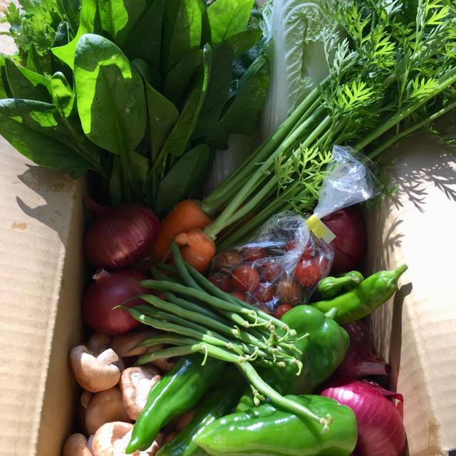 淡路島♡きまぐれ野菜set 食品/飲料/酒の食品(野菜)の商品写真