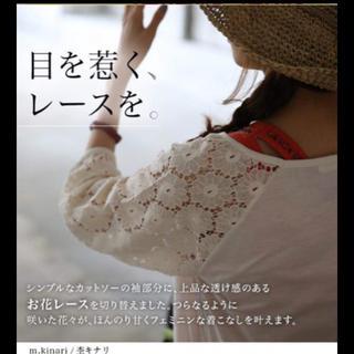 ソルベリー(Solberry)の袖レース♡ カットソー LL♡sale♡(カットソー(長袖/七分))