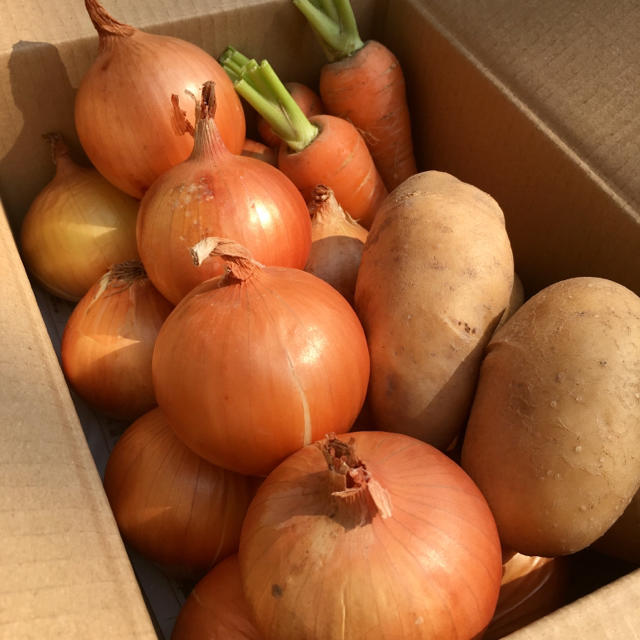 淡路島♡3種の野菜set 食品/飲料/酒の食品(野菜)の商品写真