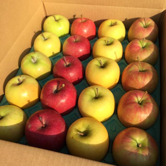 りんご サンふじ 専用 食品/飲料/酒の食品(フルーツ)の商品写真