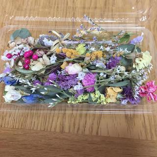 ドライフラワー 花材 花びら レジン ハーバリウム(ドライフラワー)