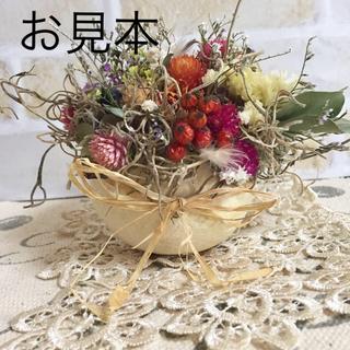 コロンと可愛らしい木の実のカップアレンジメント(ドライフラワー)
