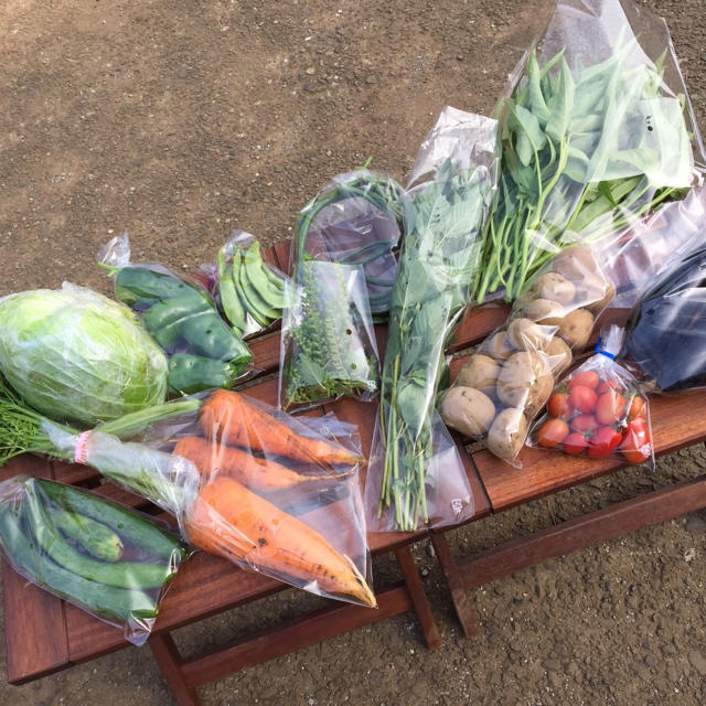 野菜セット 農薬・肥料不使用 「10〜12品」 フリル特別版 食品/飲料/酒の食品(野菜)の商品写真