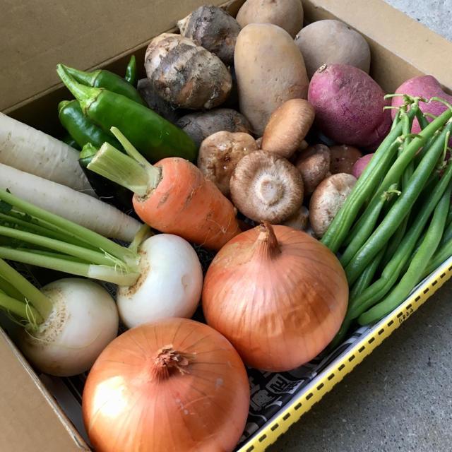 淡路島♡ミニ野菜set 【A】大根ver 食品/飲料/酒の食品(野菜)の商品写真
