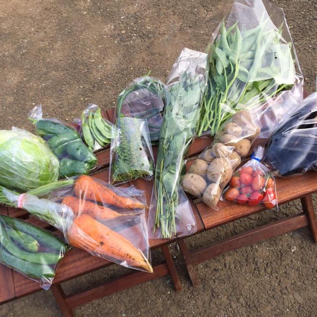 野菜セット 農薬・肥料不使用「8〜10品」 メルカリ特別版 食品/飲料/酒の食品(野菜)の商品写真